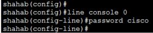 Basic Cisco Router Configuration Step 13
