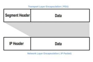 Network Layer Encapsulation