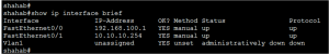 Cisco Router Interface Configuration 2