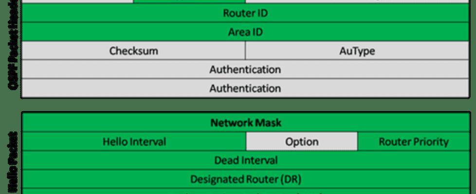 OSPF Hello Packet