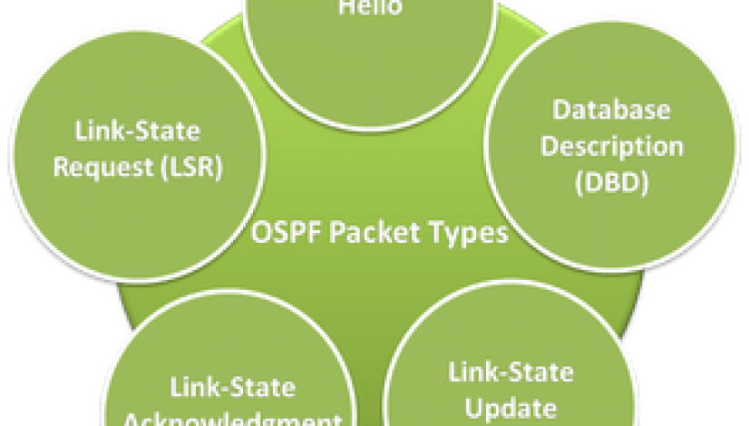 ospf packets