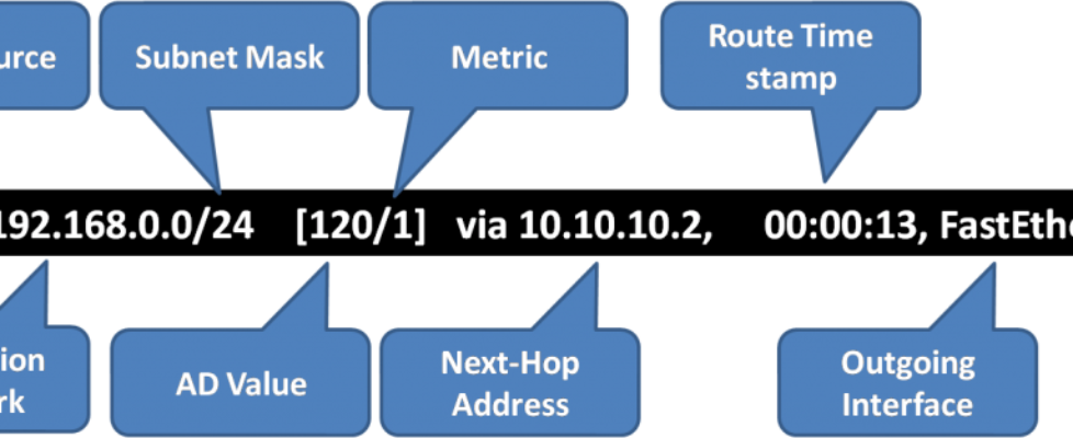 Routing Table Entries