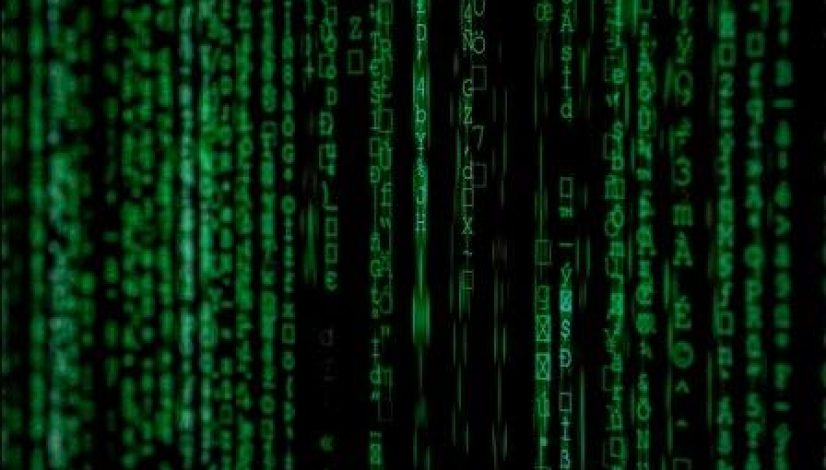 Dynamic Routing Algorithms