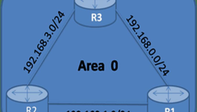 Single Area
