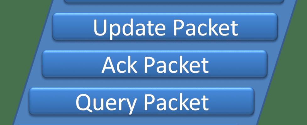 EIGRP Packets