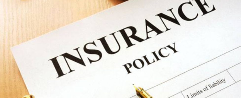 Bellevue Insurance Policy