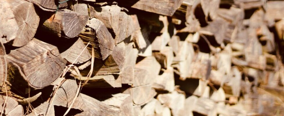 How to Find the Best Firewood Suppliers for Quality Firewood